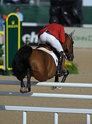 Alltech WEG Show Jumping Leg Protection Jumpers
