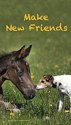 Make New Friends  Inspirational Series