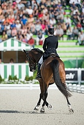 Belinda Trussell and Anton Grand Prix Special WEG 2014 Normandy,