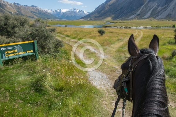 Riding in Ahuriri Conservation Area New Zealand , Wild Women Expeditions with Adventure Horse Trekking New Zealand