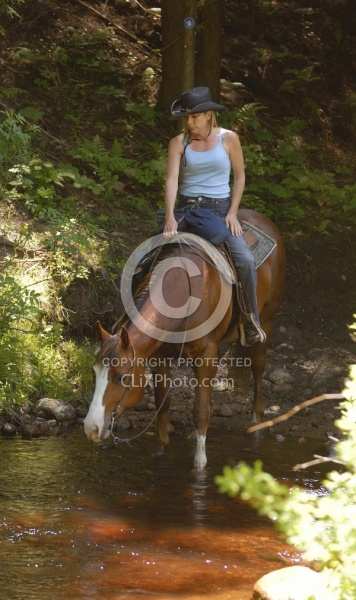 Trail Riding Quarter Horse