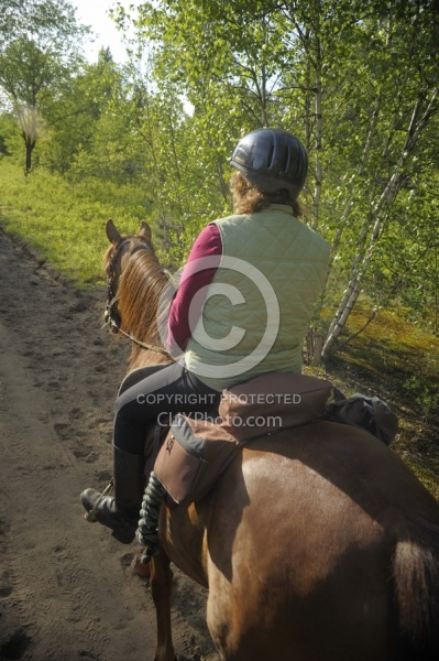 Trail Riding English